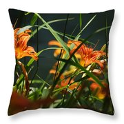 Orange Natural Beauty...   # Throw Pillow