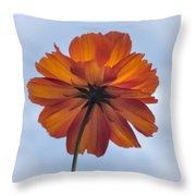Orange On Blue Throw Pillow