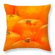 Orange Oranges Throw Pillow