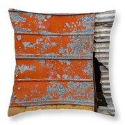 Orange Paint Throw Pillow