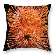 Orange Pincushions Throw Pillow