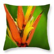 Orange Pocket Fold Throw Pillow