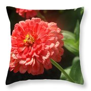 Orange Poof Throw Pillow
