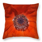 Orange Poppy  Throw Pillow by Roger Snyder