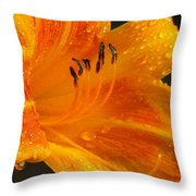 Orange Rain Throw Pillow