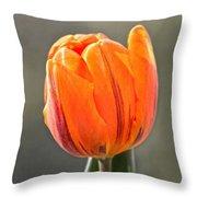 Orange Red Tulip Square Throw Pillow