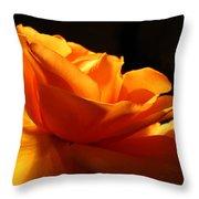 Orange Rose Glowing In The Night Throw Pillow