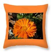 Orange Ruffles Throw Pillow