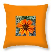 Orange Throw Pillow by Saifon Anaya