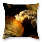 Orange Sea Nettle Throw Pillow
