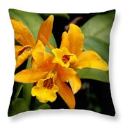 Orange Spotted Lip Cattleya Orchid Throw Pillow