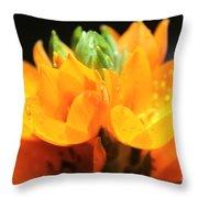 Orange Star Throw Pillow