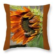 Orange Sunflower And Bee Throw Pillow