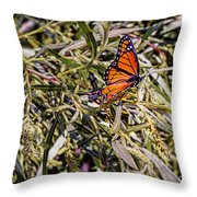 Orange Swallowtail Throw Pillow