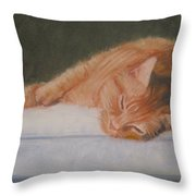 Orange Tabby Cat Throw Pillow