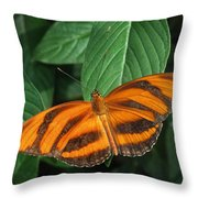 Orange Tiger Butterfly Or Banded Orange Throw Pillow