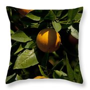 Orange Tree Throw Pillow