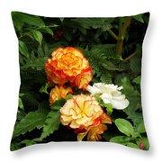 Orange Trim Throw Pillow