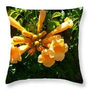 Orange Trumpets Throw Pillow