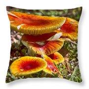 Orange V4 Throw Pillow
