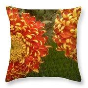 Orange-yellow Chrysanthemums Throw Pillow