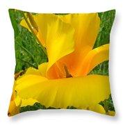 Orange Yellow Poppy Flower Art Print Throw Pillow