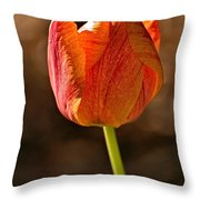 Orange/yellow Tulip Throw Pillow
