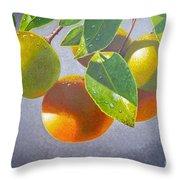 Oranges Throw Pillow by Carey Chen