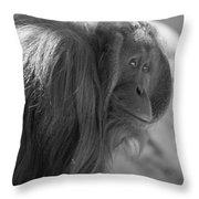 Orangutan Black And White Throw Pillow