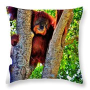 Wisdom From Above Throw Pillow