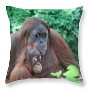 Orangutan Family Throw Pillow