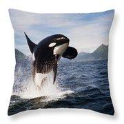 Orca Breach Throw Pillow