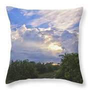 Orchard And Birds Throw Pillow