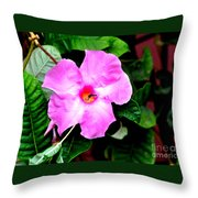 Orchard Colored Mandevilla Throw Pillow