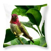 Orchard Friend Throw Pillow