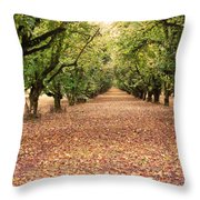 Orchard In The Morning Throw Pillow