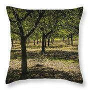 Orchard In West Michigan No. 279 Throw Pillow