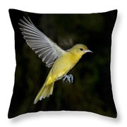 Orchard Oriole Hen Throw Pillow