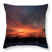 Orchard Sunset Throw Pillow