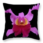 Orchid 002 Throw Pillow