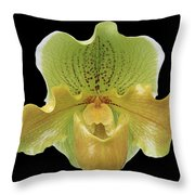 Orchid 003 Throw Pillow