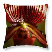 Orchid 132 Throw Pillow