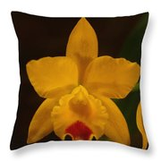 Orchid 139 Throw Pillow