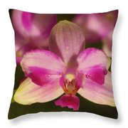 Orchid 144 Throw Pillow