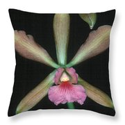 Orchid 15 Throw Pillow