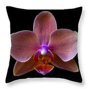 Orchid 17 Throw Pillow