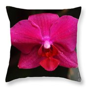 Orchid 199 Throw Pillow