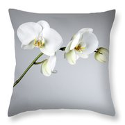 Orchid 1a Throw Pillow