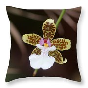 Orchid 205 Throw Pillow