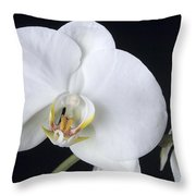 Orchid 2c Throw Pillow